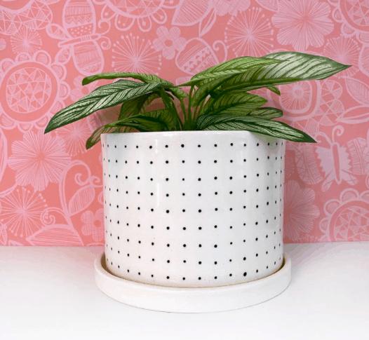 a medium white planter with black pin dots