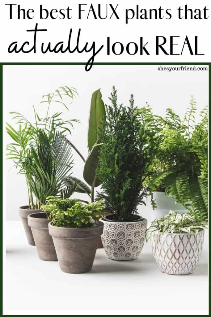a bunch of artificial plants in pots with text overlay that reads faux the best faux plants that actually look real