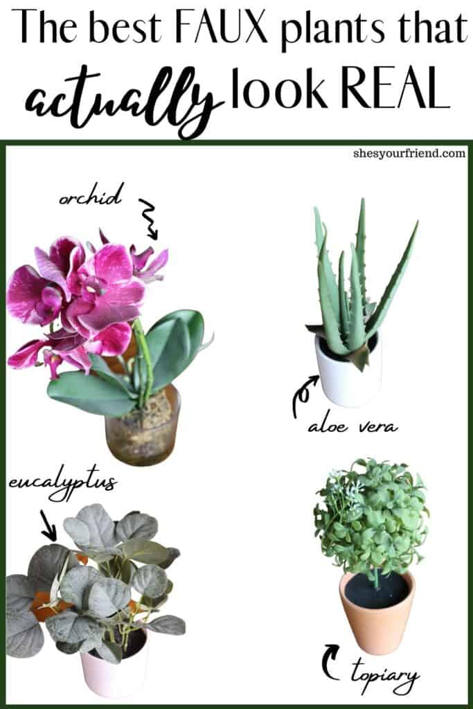 collage of four different artificial plants including an orchid, an aloe vera, a eucalyptus, and a topiary with text overlay that reads the best faux plants that actually look real