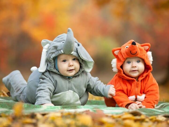 two babies dressed up for Halloween in animal costumes